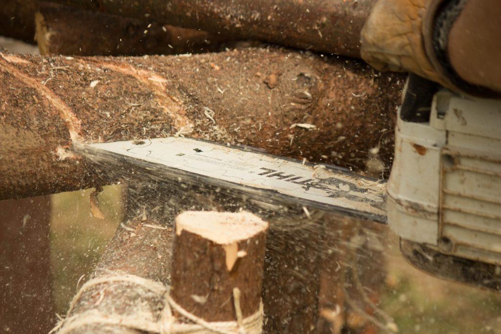 Fiche de chantier-Sécurité en exploitation forestière -Centre de l Arbre