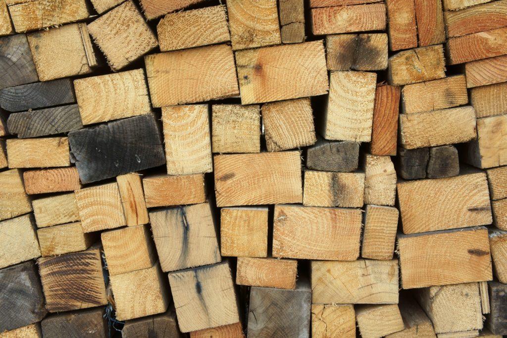 Influence gestion forestiere sur anatomie bois - Centre de l Arbre